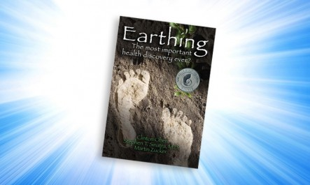 Earthing-Book