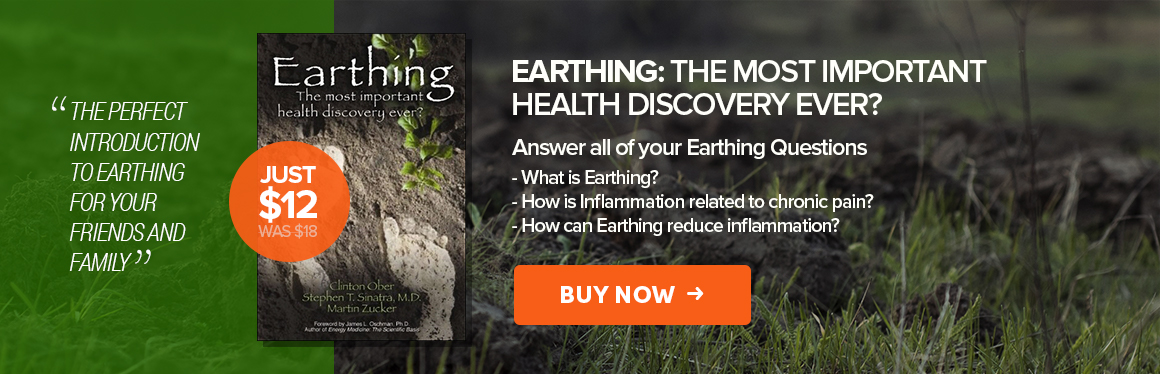 earthing-banner-book