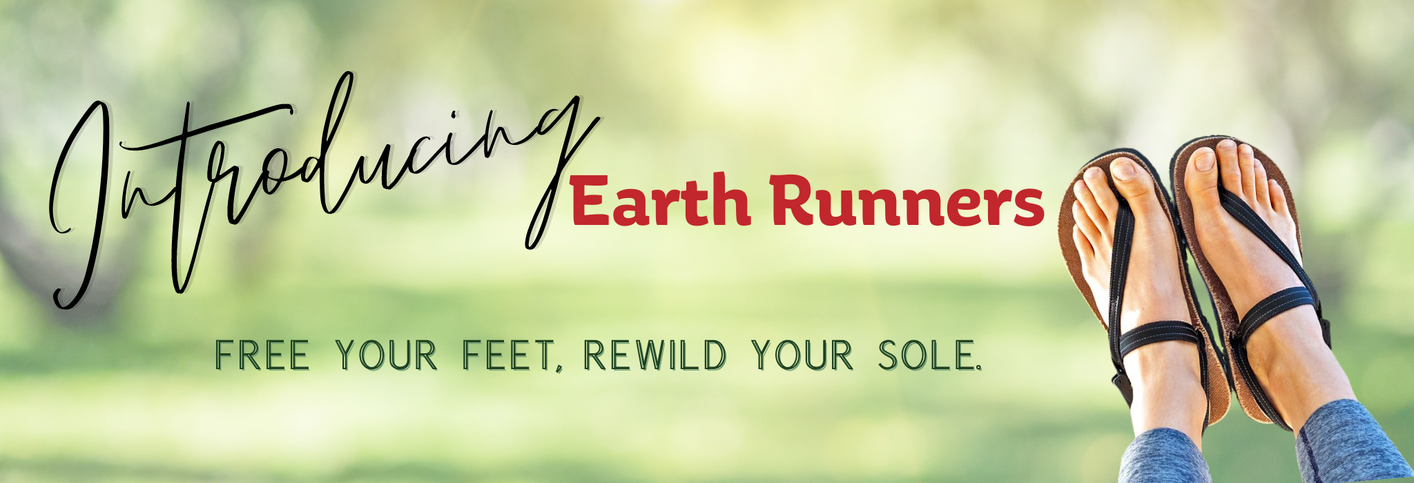 earthing shoes