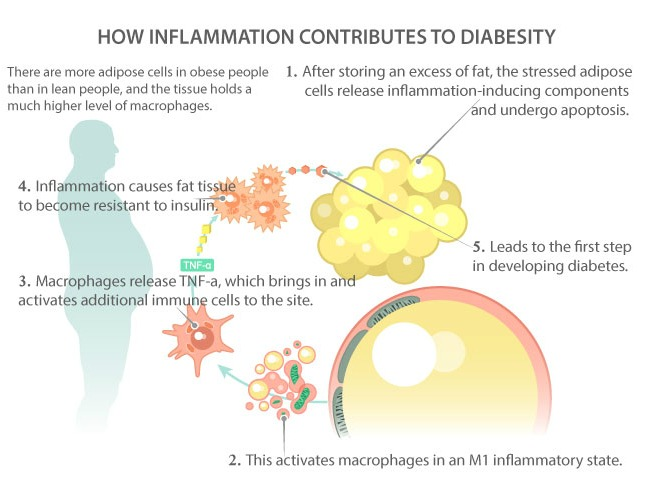 Chronic Inflammation and Diabetes - Earthing Canada